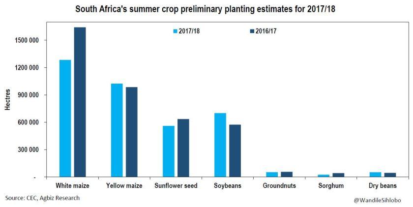 Area planted chart_SA Summer crops