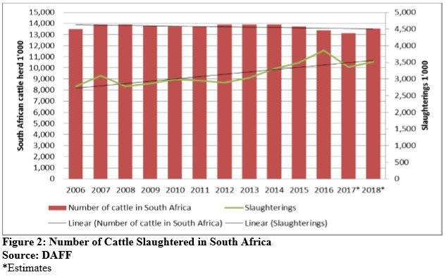 South Africa's 2018 Cattle Slaughter Could Increase by 4% y/y